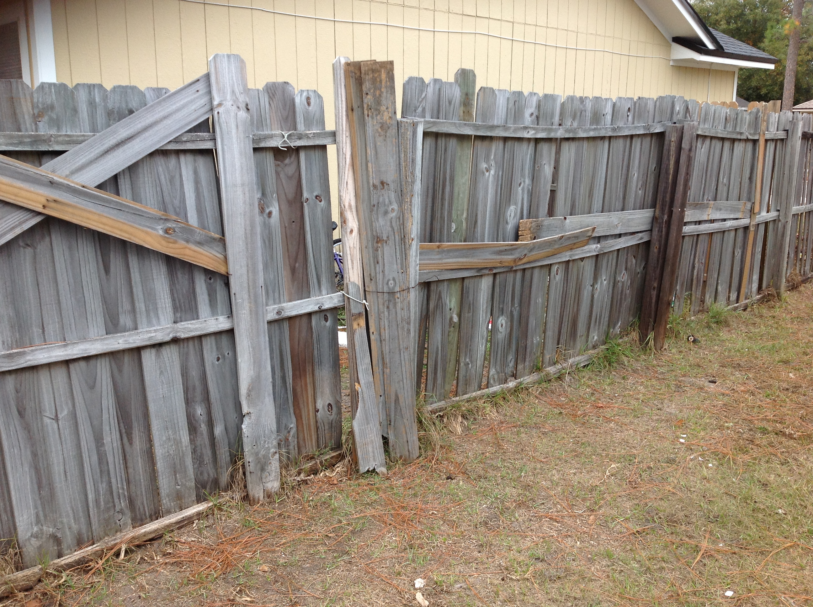to fence or not to fence essay Get an answer for 'in superman and me, what does alexie realize about paragraphs, and how does he use that to understand the world around him' and find homework help for other sherman alexie questions at enotes.